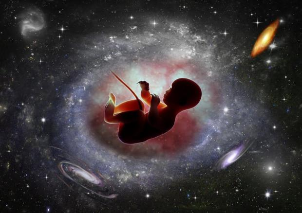 bebek nasıl dünyaya gelir