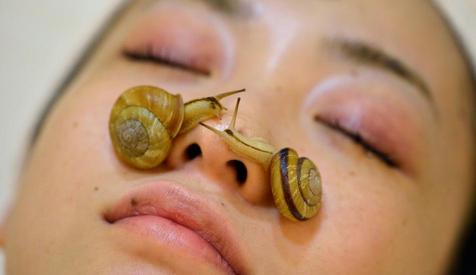Salyangoz kremi ne işe yarar? Salyangoz kreminin cilde faydaları