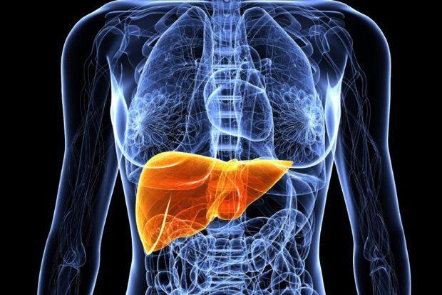 karaciğer yağlanma