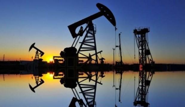 Brent petrolün varili 61,22 dolar