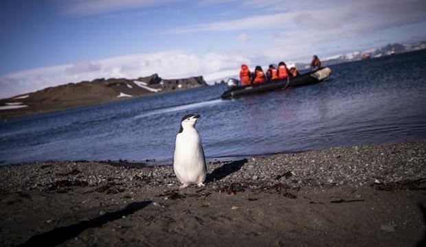 Rus bilim adamı: Türk Antartika 2023'ten önce gerçekleşebilir!