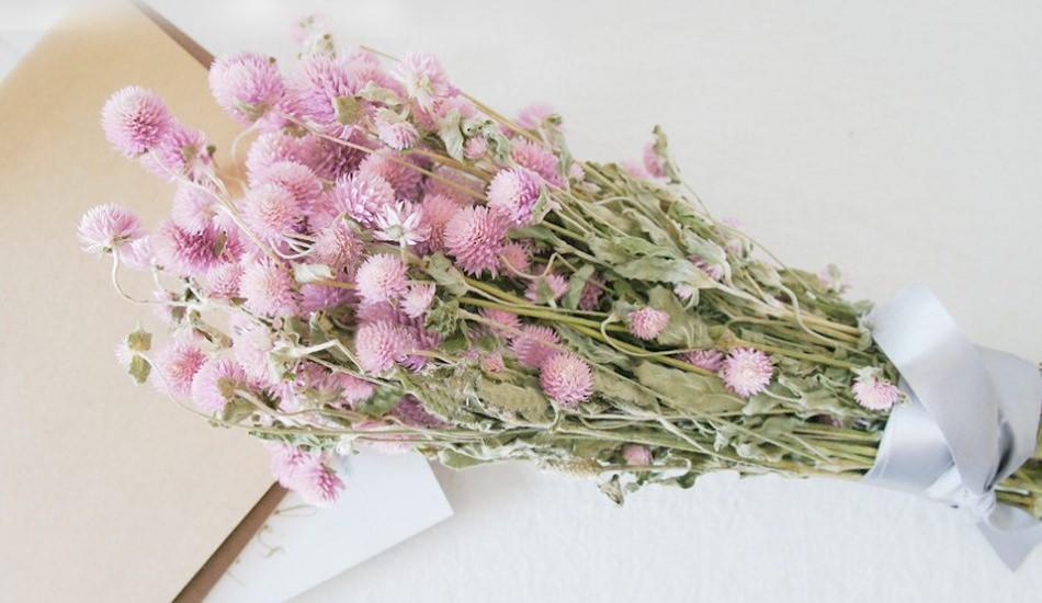 Çiçek ve bitki nasıl kurutulur?