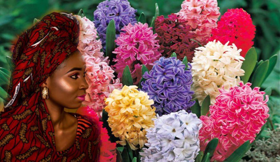 Sümbül çiçeği bakımı nasıl yapılır?