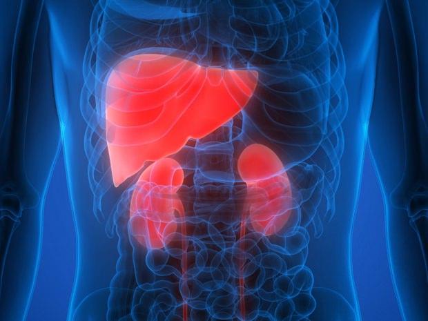 karaciğer kasneri
