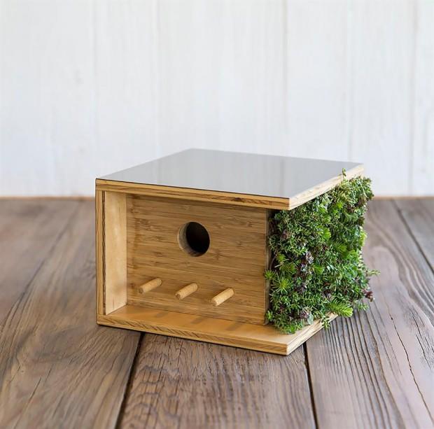 Kuş evi modelleri