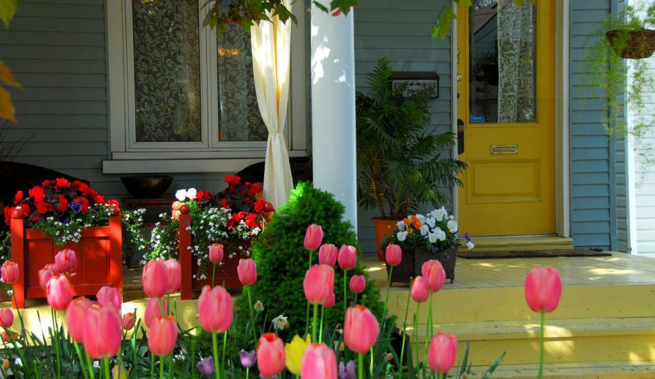 Nisan ayı bahçe ve çim bakımı
