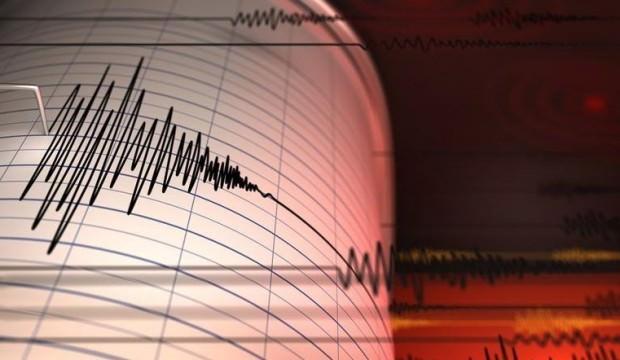 Hindistan'da şiddetli deprem