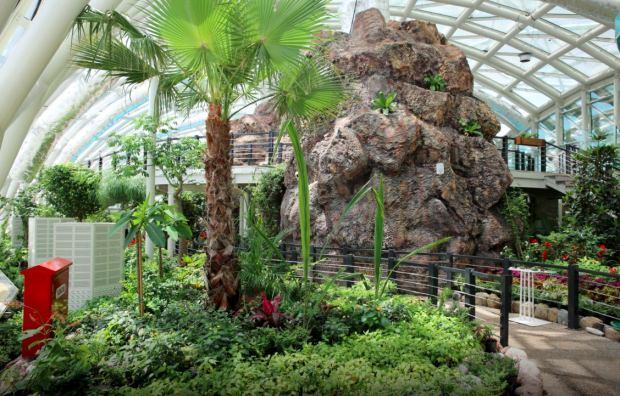 Konya Tropikal Bahçe