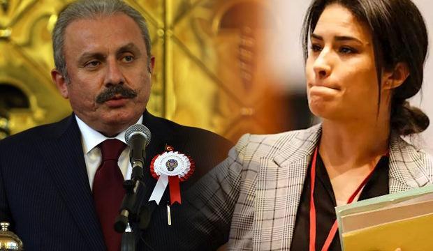 TBMM Başkanı Şentop'tan Sonia Krimi'ye sert tepki