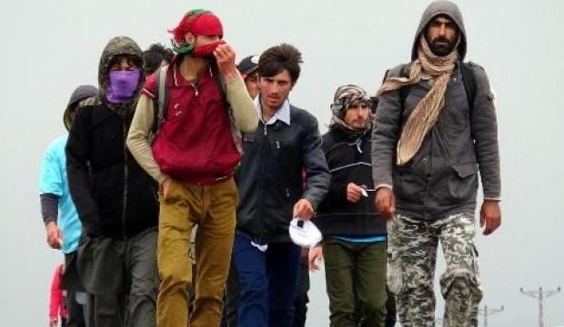 Dedikoduya inandılar, Türkiye sınırına akın ettiler