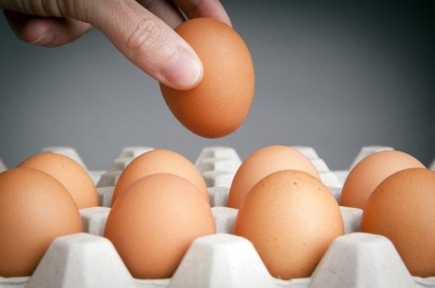 Yumurta saklama yöntemleri