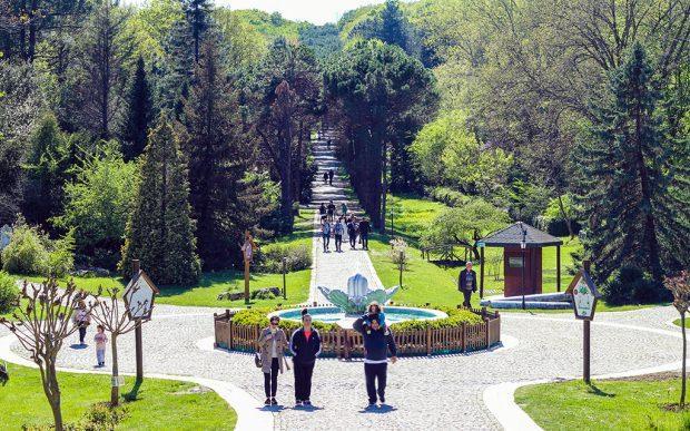 Sarıyer Atatürk Arboretumu