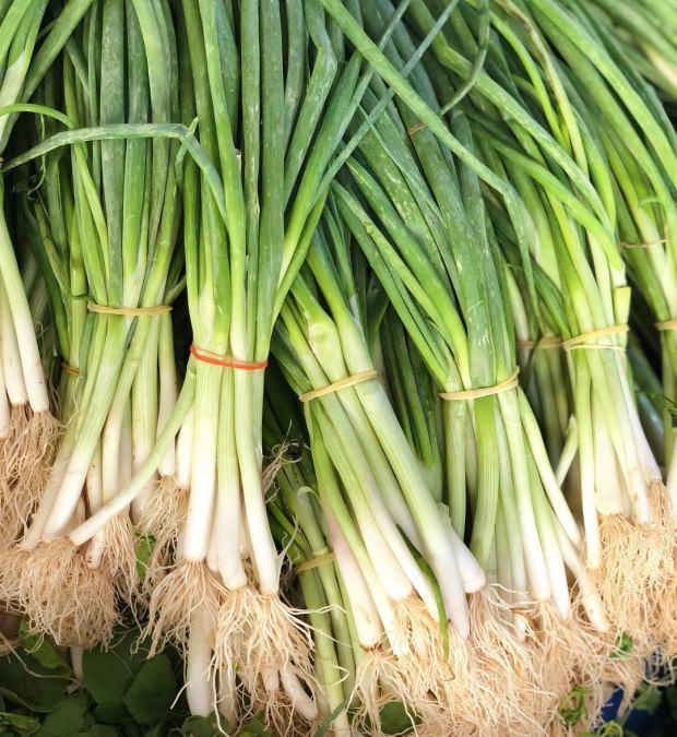 yeşil soğanın besin değerleri