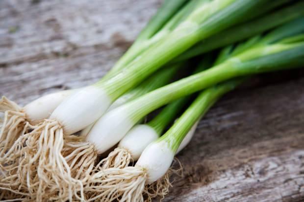 yeşil soğan hangi hastalıklara iyi gelir