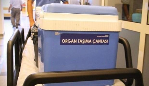 İngiliz turist organlarıyla hayat verdi...