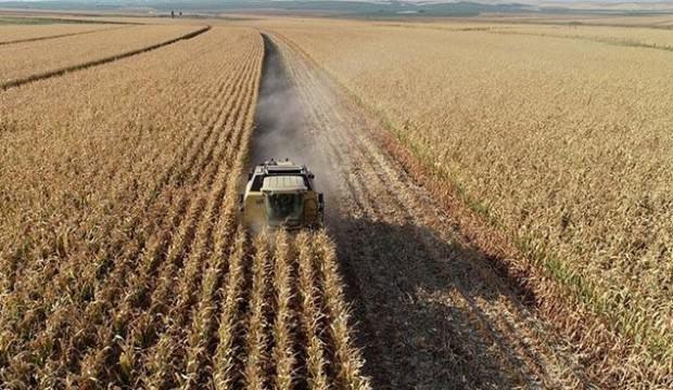 Tarım ÜFE nisanda arttı