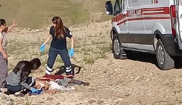 Dehşet! Köpekler evine dönen kadını öldürdü