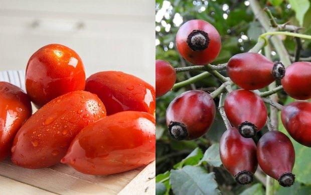 likopen nedir hangi besinlerde bulunur