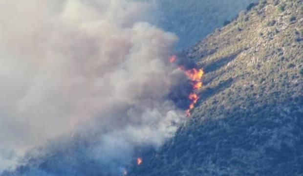 Antalya'da yangın! Müdahale ediliyor...
