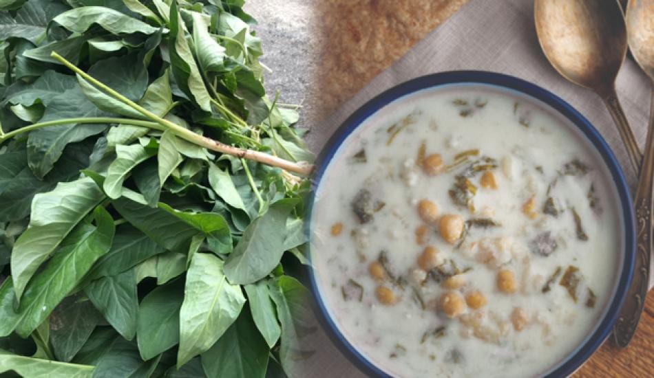 Tırşik otunun faydaları nelerdir? Tırşik otu çorbası ne işe yarar?