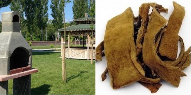 Piknik alanı -Kav mantarı