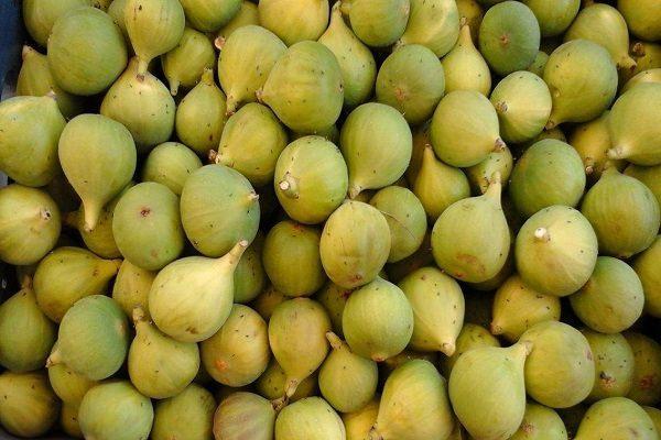 incirin içerdikleri