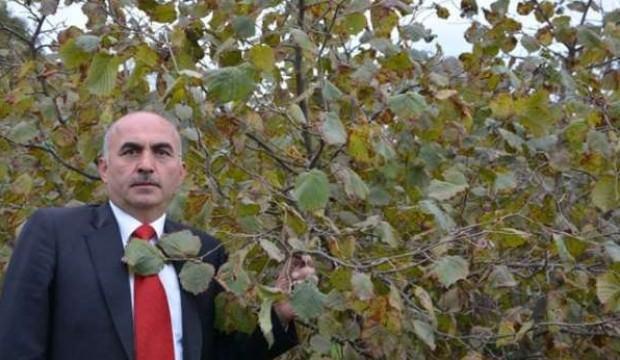 Alattin Gülal'dan flaş fındık açıklaması