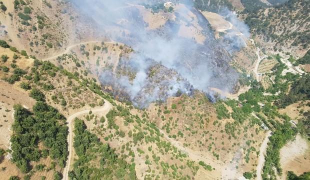Bahçeyi temizleyeyim derken ormanı yaktılar: 2 hektar kül oldu