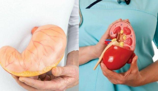 Gastrit belirtileri & bitkisel tedavisi! Gastrite ne iyi gelir? Doğal kür