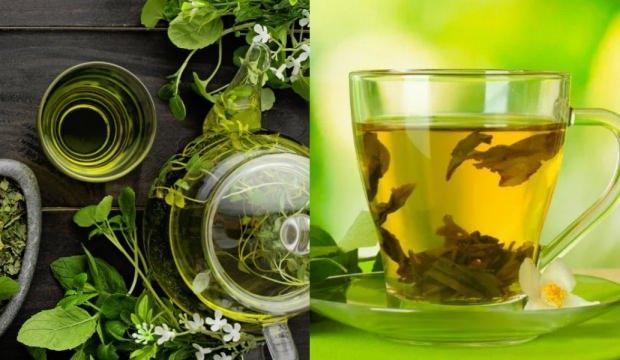 Yeşil çayın faydaları, yeşil çay nasıl kullanılır? Zararları nelerdir?