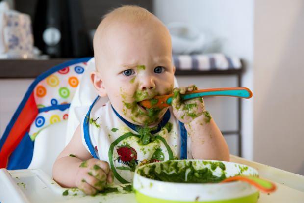 bebekler için semizotu yemeği
