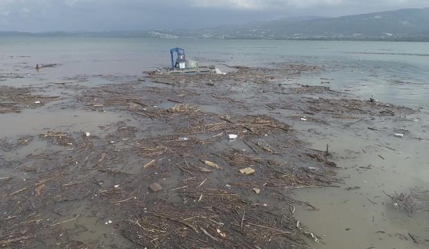 Selden dolayı tonlarca ağaç Sapanca Gölüne sürüklendi