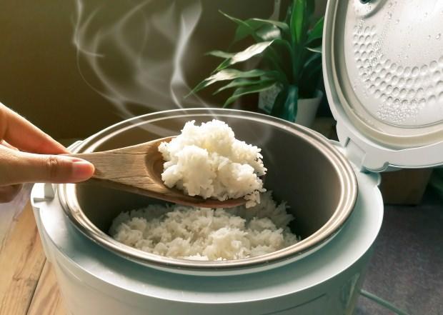 baldo pirinç özellikleri nelerdir