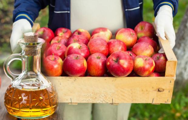 Zayıflatan ballı elma sirkesi nasıl yapılır? Elma sirkesi ile zayıflama yöntemi!