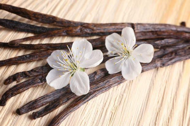 vanilyanın mideye faydaları