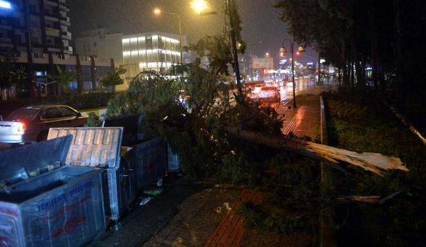 Çanakkale'yi fırtına vurdu: Çatılar uçtu, ağaçlar devrildi
