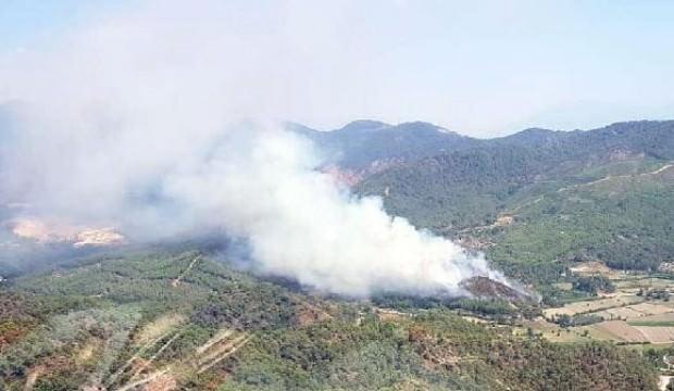 Muğla'da orman yangını: Havadan ve karadan müdahale ediliyor