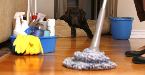 Ev temizliği hakkında bilinmesi gerekenler