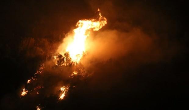 Aydın'da korkutan yangın! Konrol altına alındı