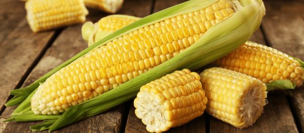Haşlanmış mısır kilo aldırır mı? Mısır kaç kalori?