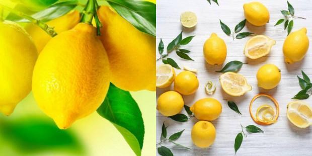 5 günde 3 kilo zayıflatan limon diyeti
