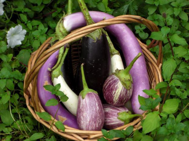 patlıcanın faydaları nelerdir