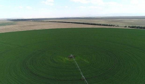 Hazine'ye ait tarım arazilerinin satışında yeni düzenleme!