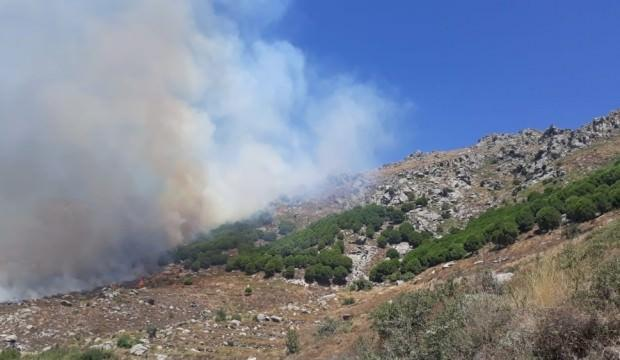 Marmara Adası'ndaki yangınla ilgili 2 kişi adliyeye sevk edildi