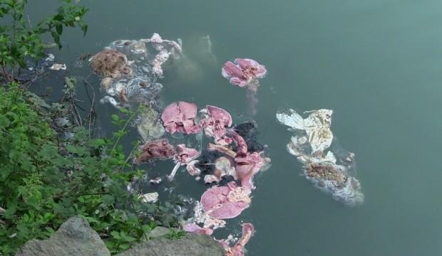 Baraj gölünde pes dedirten görüntü