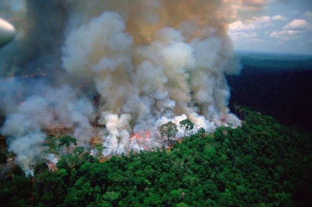 Adriana Lima'dan orman yangınlarına çağrı