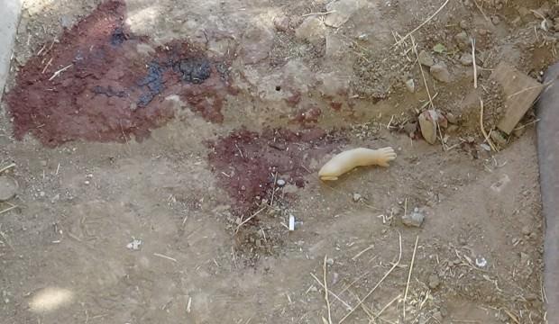 Diyarbakır'daki silahlı kavgada kahreden detay!