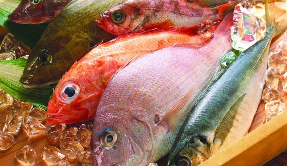 Balığın faydaları nelerdir? Balık en sağlıklı nasıl tüketilir?