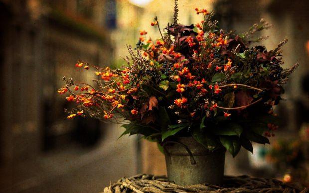 Çiçeklerin canlılığını yitirmemesi için ne yapılmalı