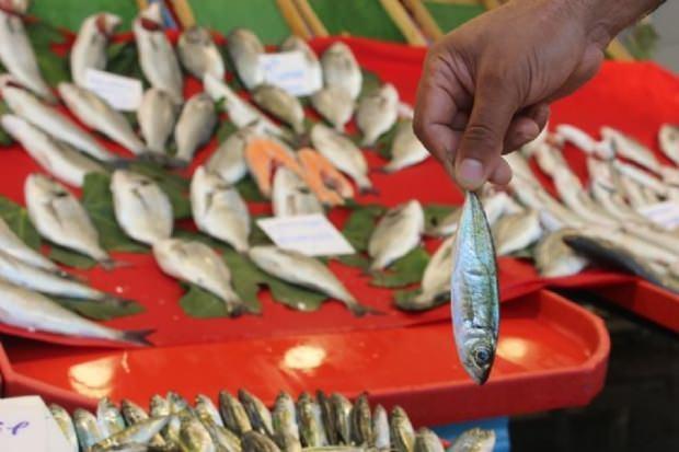Balık bayat nasıl anlaşılır?